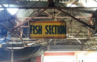 fish section.jpg