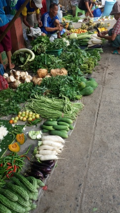 All kinds of utan (veggies)
